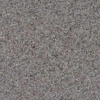 silvestre gray